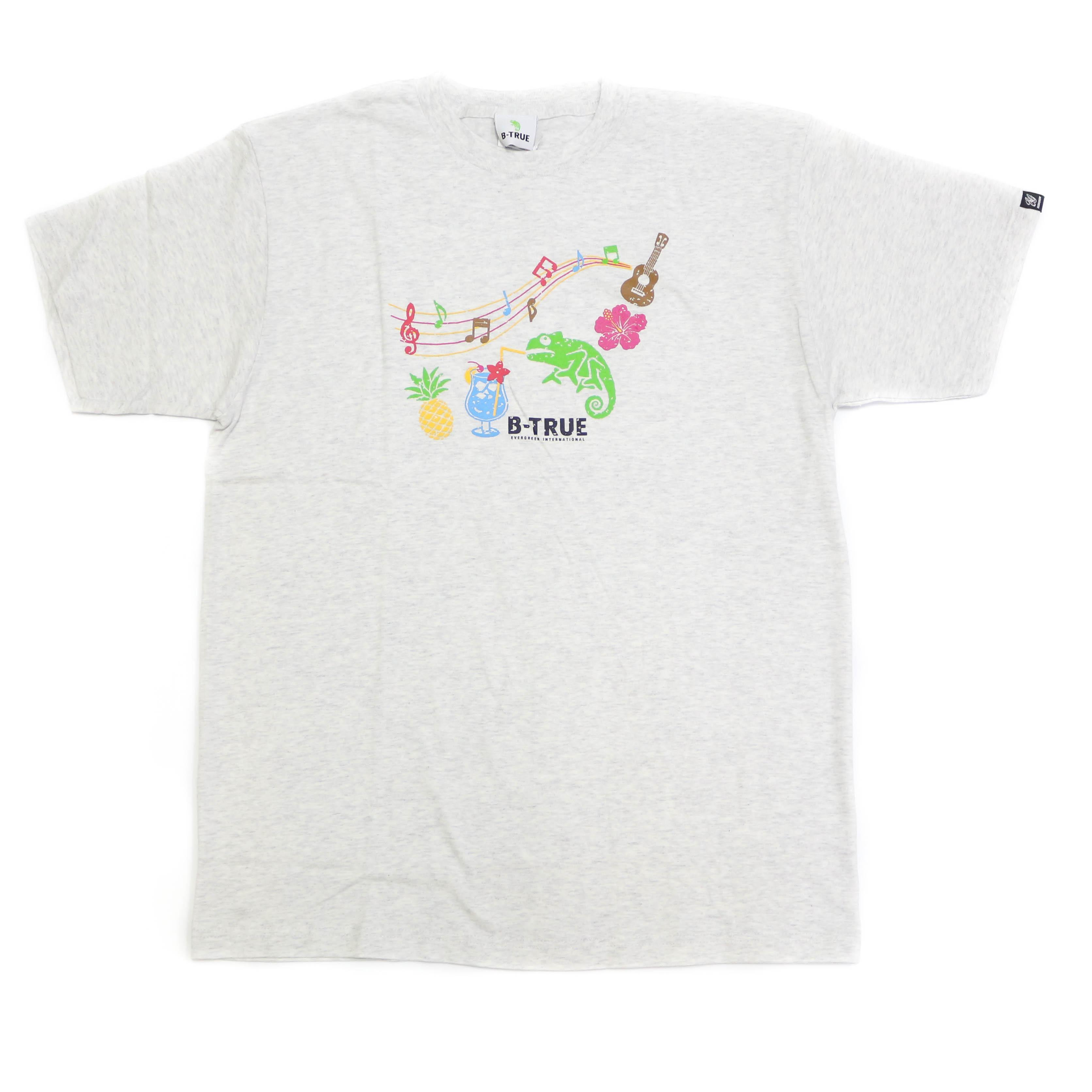 Sale Evergreen T-Shirt Short Sleeve Type 1 Size XL Ash (0816)